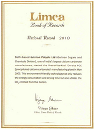 Limca Book  of Record for Onsite Plant
